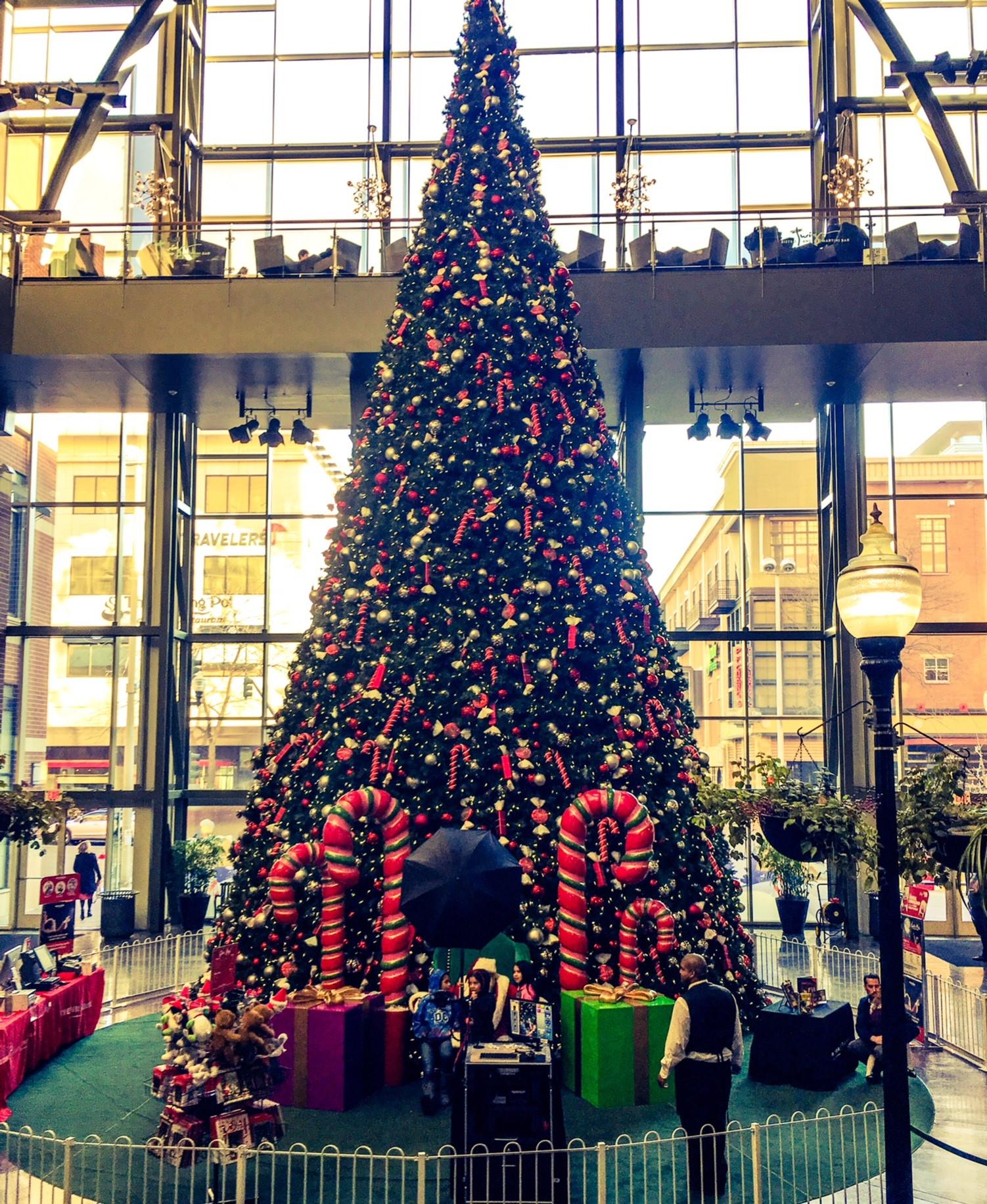 Christmas Tree at River Park Square